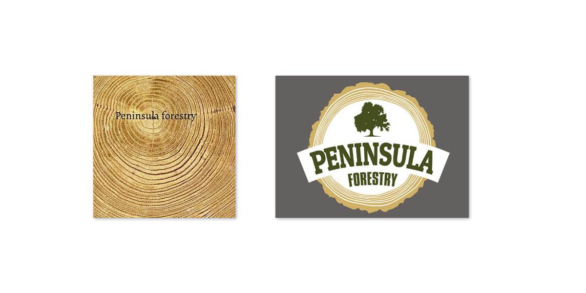 Integrated Ideas took inspiration from the end of a log and incorporated the look of the rings into the new logo